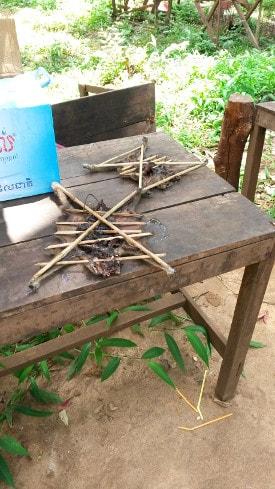 Dschungeltier Kambodscha